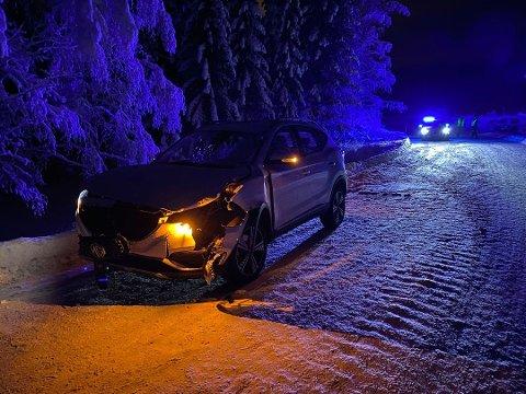En personbil kjørte på en hest i Lismarka lørdag ettermiddag. Personene i bilen er fraktet til legevakt for sjekk. Foto: Kari Utgaard