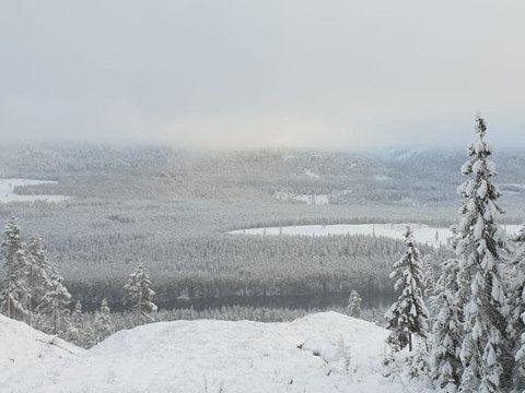 VÆR: Onsdag var det kommet endel snø, men tåke/lavt skydekke og fare for underkjølt regn i store deler av området.