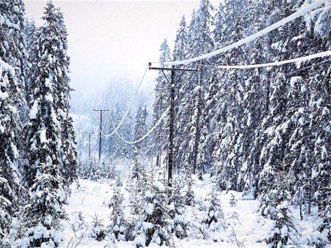 LIVSFARLIG TUNGE: Bildet viser islast på ledninger et sted på Romerike.
