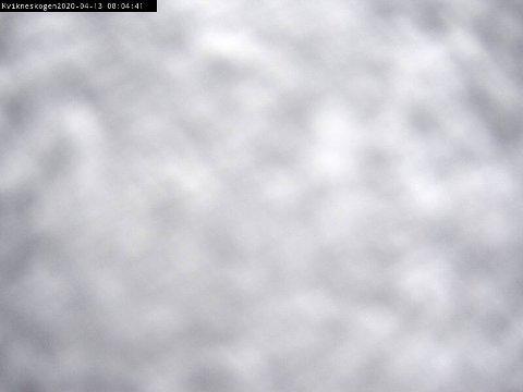 NYSNØ: Dette bildet fra Statens vegvesens webkamera mandag morgen, illustrerer vel greit at det er vanskelige kjøreforhold på riksveg 3 på Kvikne.