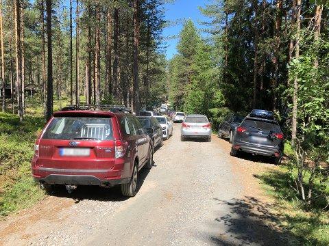 SMALT: Flere badegjester hadde forrige helg parkert på begge sider av vegen ned mot badeplassen ved Bergesjøen. Det var flere steder veldig smalt, og større biler fra nødetatene ville fått problemer.