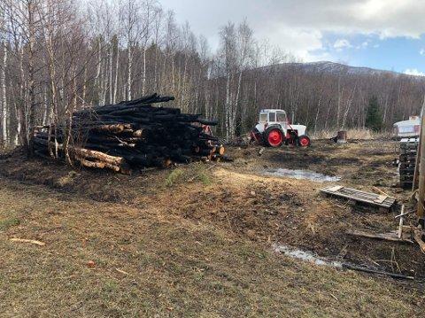 BRENT: En tømmerhaug har brent opp i gressbrannen på Tynset lørdag ettermiddag.