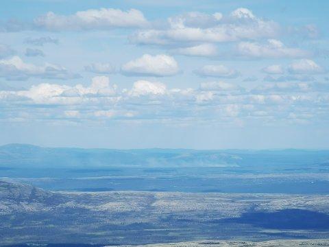 Oversiktsbilde av skogbrannen fra Sålekinna.