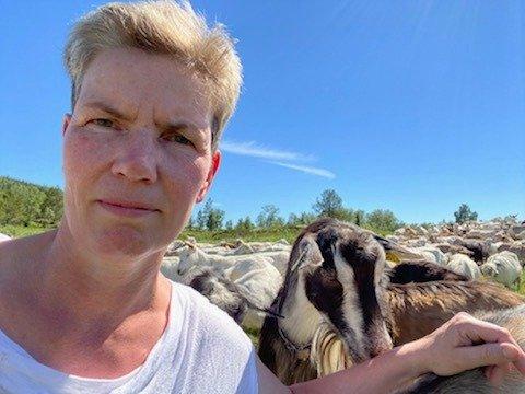 GOD HJELP: Marianne Rønning på Tørresvangen, her med mjølkedyra, fikk god hjelp av beitelaget, ungdommene i huset, og venner til å lete etter geitene i Tunndalen som ble oppskremt etter bjørneangrepet.
