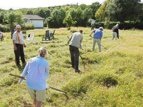 Dette er fra fjorårets slått av Moløkka, der bonde Bent Nilsen ledet deltakerne gjennom dagen.