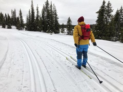 ØDELEGGER: Løypelaget håper folk lar være å kjøre og ri på hester i skiløypene de har tråkket opp.