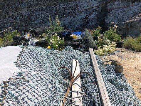 Dette synet møtte Odd i sommer. Søppel ligger og flyter på Påleskjær.