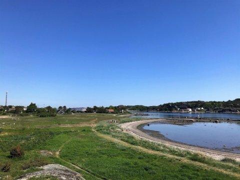 Fynstranda er blant strendene som kom litt dårlig ut nå når det gjelder vannkvalitet.