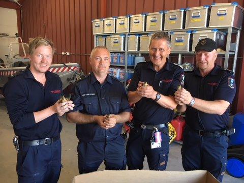 Mannskapene fra Bamble brannvesen fant alle de 10 andungene, blant annet ved hjelp av varmesøkende kamera.