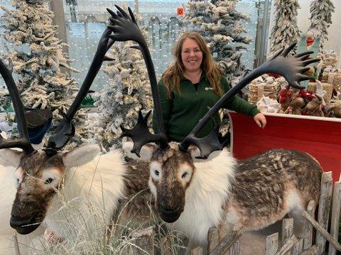 Kathrine Skjelvik har nok en av de aller fineste julebutikkene i Grenland. Hageland Porsgrunn trekker til seg skuelystne langveisfra.