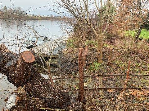 Den planlagte elvepromenaden provoserer veldig mange beboere og framtidige beboere langs elva.