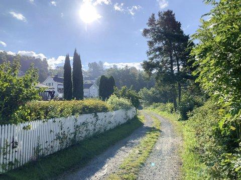 SKADEVIRKNINGER: Dette er veien som fører til de som bor nærmest lekterkaia der steinmasser fra nye E18 skal fraktes. Naboene frykter langvarige skadevirkninger på natur og miljø.