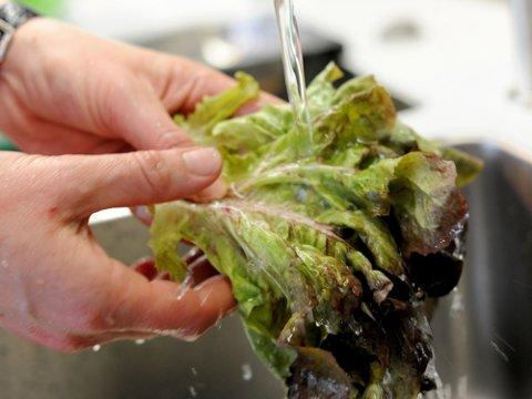 FÅR SKYLDA: Matvarer, som grønnsaker eller svinekjøtt, gis skylda for bakterie-utbruddet.