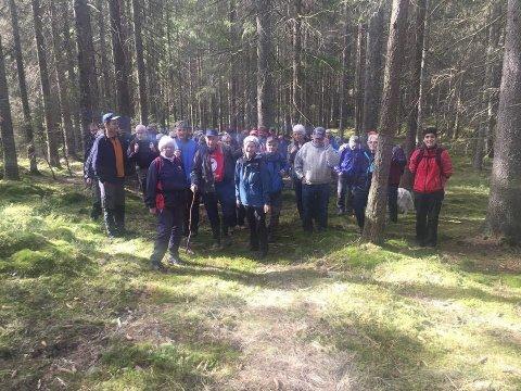På tur: Rundt 100 personer var med å gå den nyetablerte stien fra Nordalen til Høitomt.  Foto: Pål Andersen