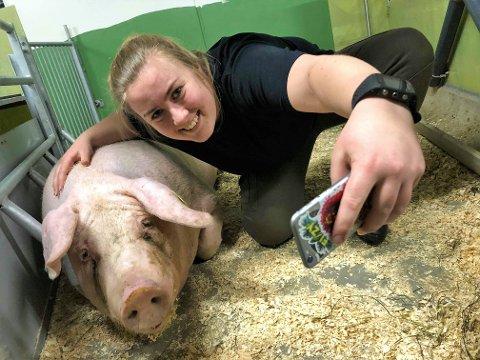 SELFIE: Elise Eng tar en selfie sammen med en av grisene. Hun viser livet i grisehuset på Instagram-kontoen Grisebonden.