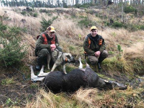 Hjelp av Tobo: Lørdag 24.  oktober ble siste jaktdag for Vestby/Haraldstad elglag i år. Harald Solberg (til høyre) felte siste dyret på kvota, som var en flott kalv i los for hunden Tobo. Her sammen med hundefører Svein Kristiansen.