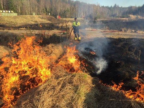 SKOGBRANNFARE: Rakkestad brannvesen oppfordrer rakstingene til å ikke fyre opp