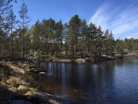 Idyll: Etter den siste tildelingen av penger kan kommunen gjennomføre planene om å blant annet lage en brygge, teltplasser, sittegrupper og et sanitæranlegg ved Frønesjøen.