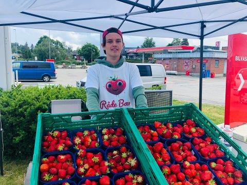 SOMMERJOBB: Adrian Søderkvist (16) fra Rakkestad står på stand utenfor Circle K i Bergenhuskrysset og selger jordbær i sommer.