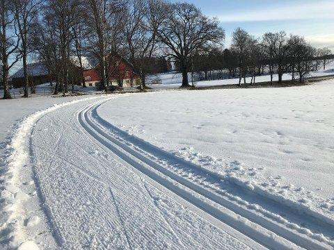 SKIFORHOLD: Etter en heller snøfattig vinter i fjor, er det kanskje mange som ønsker seg hvitt dekke på bakken i år.