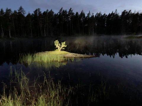 Trolsk: - Det er en veldig spesiell opplevelse å gå ute om natten, da ligger det ofte en trolsk tåkedis over myrene, sier turleder Atle Morset. Her ser vi et bilde fra en av de tidligere nattvandringene til DNT Indre Østfold.