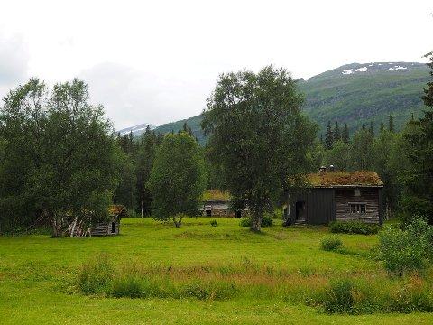 GRANNESET: En gammel fjellgård i Saltfjellet-Svartisen nasjonalpark. Friluftsskolen 2018 skal slå leir her i tre uker.