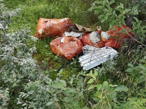 UTSIKTEN: Disse søppelsekkene og skrotet har ligget nedenfor E12 ved Utsikten siden i vår.