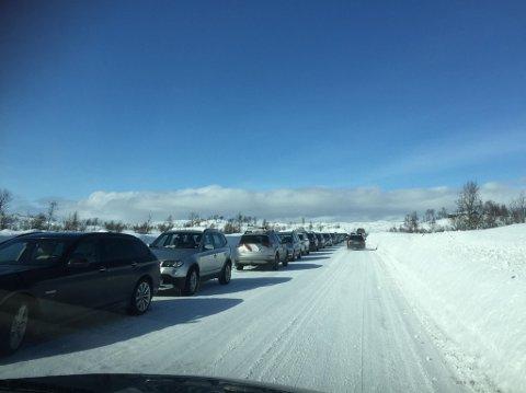 Slik ser det ut langs E12 før man tar av inn til parkeringsplassen ved Røde Kors-hytta.