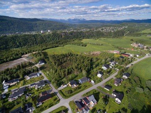 I forbindelse med etableringen av hammeren Boligpark, kommer det en ny vei. Boligparken blir etablert i området der granskogen er. Foto: Helgeland bolig