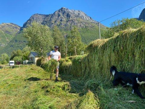 På gammelmåten: Mye av det som skjer på gården til Bård Johan Olsen skjer på gammelmåten. Han driver blant annet med hesjing, men ikke i så stor grad som han kunne ønske.