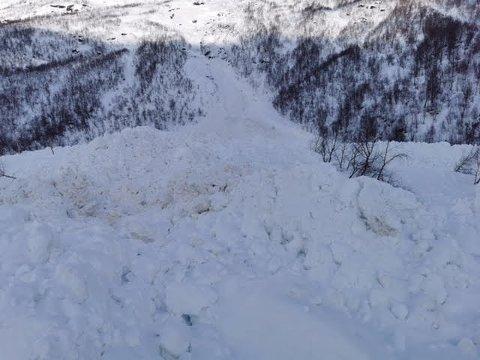 Illustrasjonsfoto fra Stormdalen. Foto: Statskog