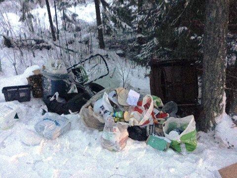 DUMPET: Et lass med søppel er dumpet langs Lillehaugvegen i Brumunddal.