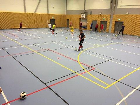Brøttumshallen er en liten idrettshall. Det er ikke blitt en god idrettshall slår leder av idrettsrådet Arnfinn Nes fast.