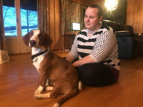 Fant hund: Anette Rogne Aas fant denne hunden i Tingnesvegen natt til onsdag. En ett år gammel drever