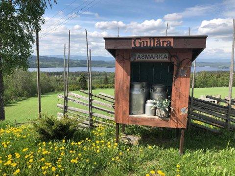 Gullåras mjølkerampe i Åsmarka