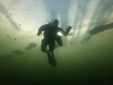 UNDER ISEN: Mange benyttet helga til en tur oppå isen. Slik så det ut under isen ved Mjøsbrua søndag, der Ole Flensborg (bildet) og fem andre dykkere fra Mjøsen Dykkerklubb var i aksjon.