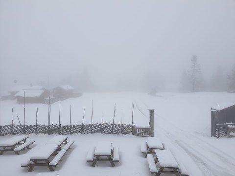 SLUDD OG SNØ: Det er ikke første gang det snør i Hedmark i begynnelsen av mai. Slik så det ut på Hygga på Ljøsheim 10. mai 2019.