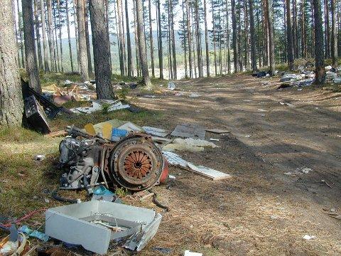 Søppeldumping som dette like utenfor HRA-området har blitt et sjeldent syn.