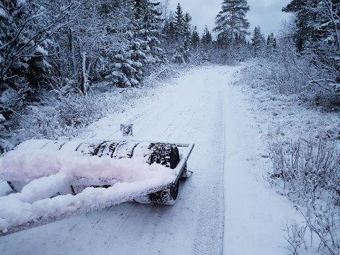 Det har kommet noe snø på Ringkollen, og det er meldt mer til helgen.