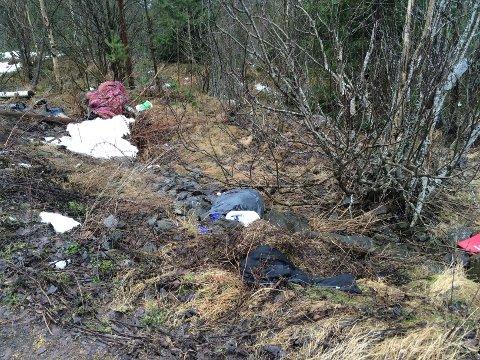 Etter hva innsender forteller, skal dette være bevis på forsøpling langs E16 Nes i Hole, i nærheten av minnestedet for Utøya.