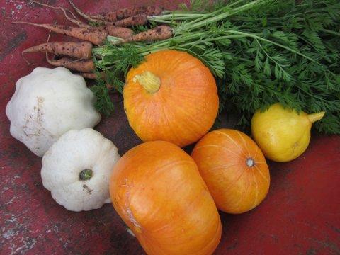 Det blir salgsboder med økologiske grønnsaker, egg, ferske bakevarer, saft- og syltetøy, håndarbeid og andre hjemmelagde produkter.