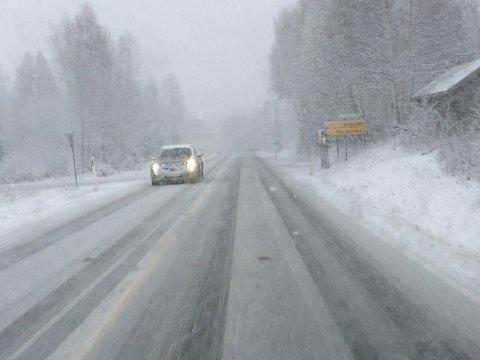 MYE NEDBØR: Natt til tirsdag og tirsdag formiddag er det meldt kraftig snøvær over store deler av Østlandet.