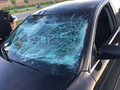 Mannen som kjørte med denne ruta etter en elgpåkjørsel, har fått førerkortet beslaglagt.