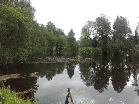 Mye vann: Flomstore elver og vassdrag etter siste tids store nedbørmengder.