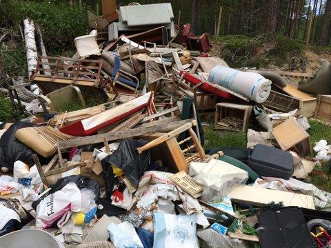 Denne haugen med forkastede lopper ligger i skogen på Sokna. Men på Torunn Hovdes grunn.