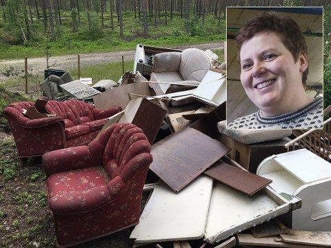 Avhengig av HRAs åpningstider vil Torunn Hovde invitere til bygdedugnad for å rydde vekk møblene som nå er blitt søppel etter fjorårets loppemarked.
