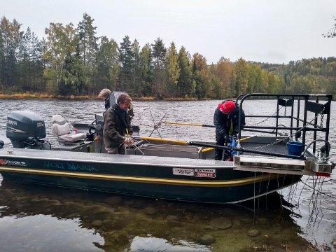 ELEKTROFISKE: Forskerteamet fra NINA var ute på Randselva for å kartlegge fiskebestanden.