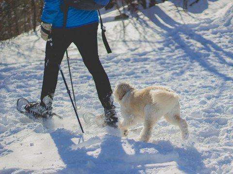 Med truger eller brodder kommer du langt, også på snø og is. Foto: Norsk Friluftsliv/ANB