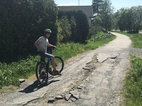Skolevei: Slik ser skoleveien til Helgerud skole ut. – Ikke bra, mener Gabriel Svendsen Brandenberger (11).