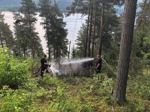 Mandag var det skogbrann i Nordre Loreåsen, etter at en ledning ble kuttet og antente bakken under trefelling.